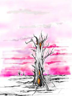 drawing pinksunrises deadtrees pencilart