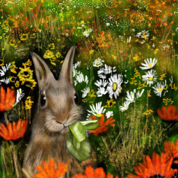 wdpflowerfield drawing draw bunny nature