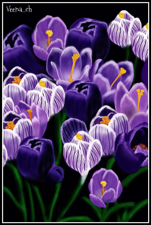 #wdpflowerfield  #drawing  #mydrawing  #art  #digitalart  #flowers  #purple
