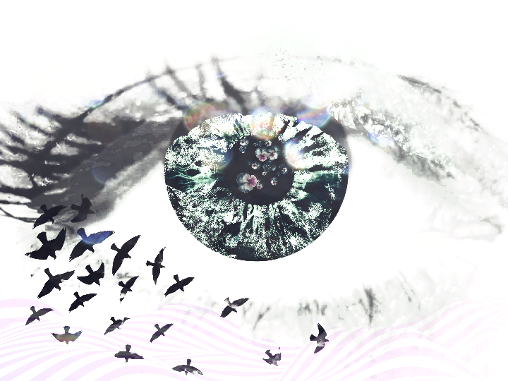 Eye Abstract Flowers Clipart Bokeh