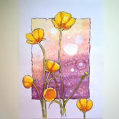 summer drawing sketch flower colorsplash