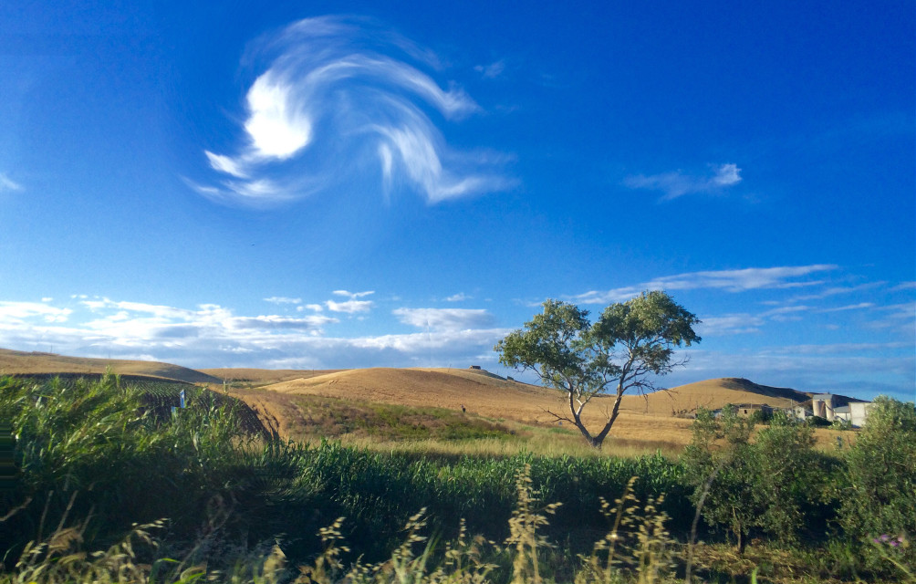 #wapwindy #bluesky #june #hills #trees @freetoedit #freetoedit @haig_pa