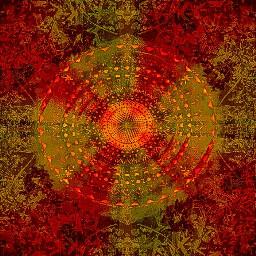 mandala volumeone visionary colorful love