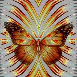 colorsplash colorful picsart digitalart illustration