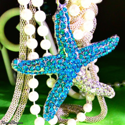sparkle star colorful photography fresh