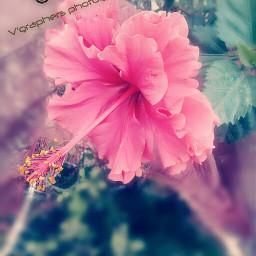 nature_beauty follow_me