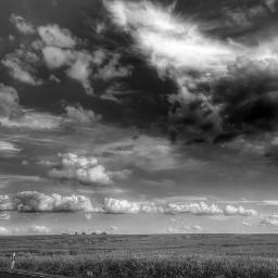 clouds blackandwhite nature summer field