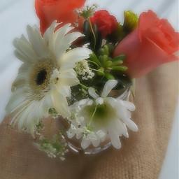 nettesdailyinspiration softcontrast flowers pretty