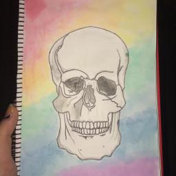 art drawing skull