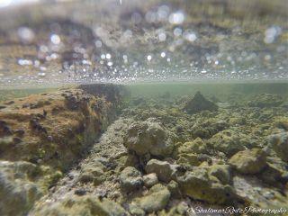 underwater rocks water clearwater beach