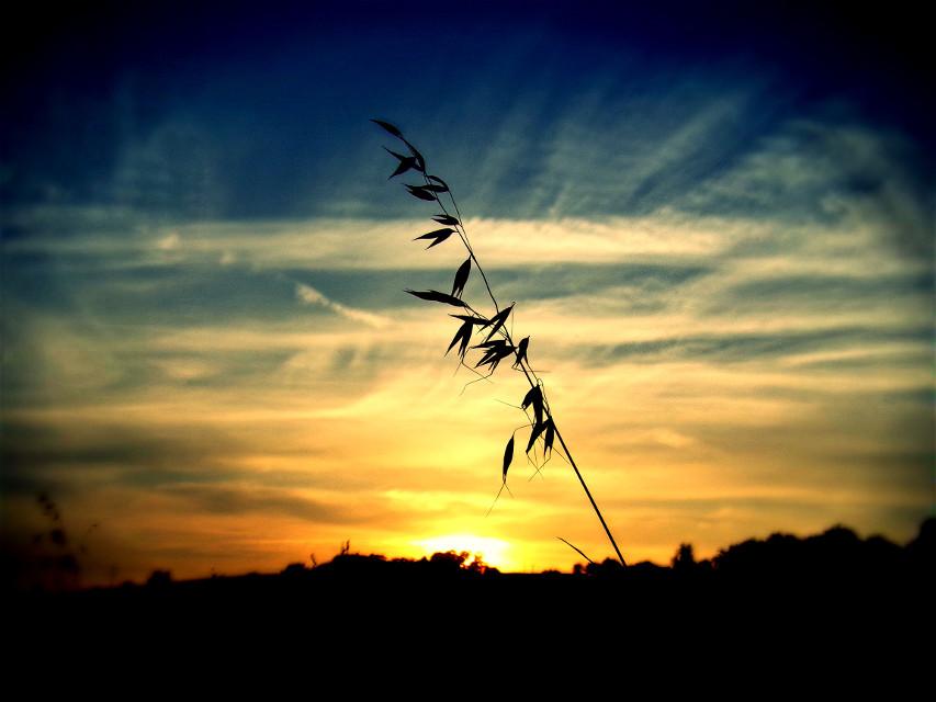 Photography #sky #heaven #soon #sunset #nature