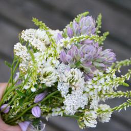 bouquet garden evening