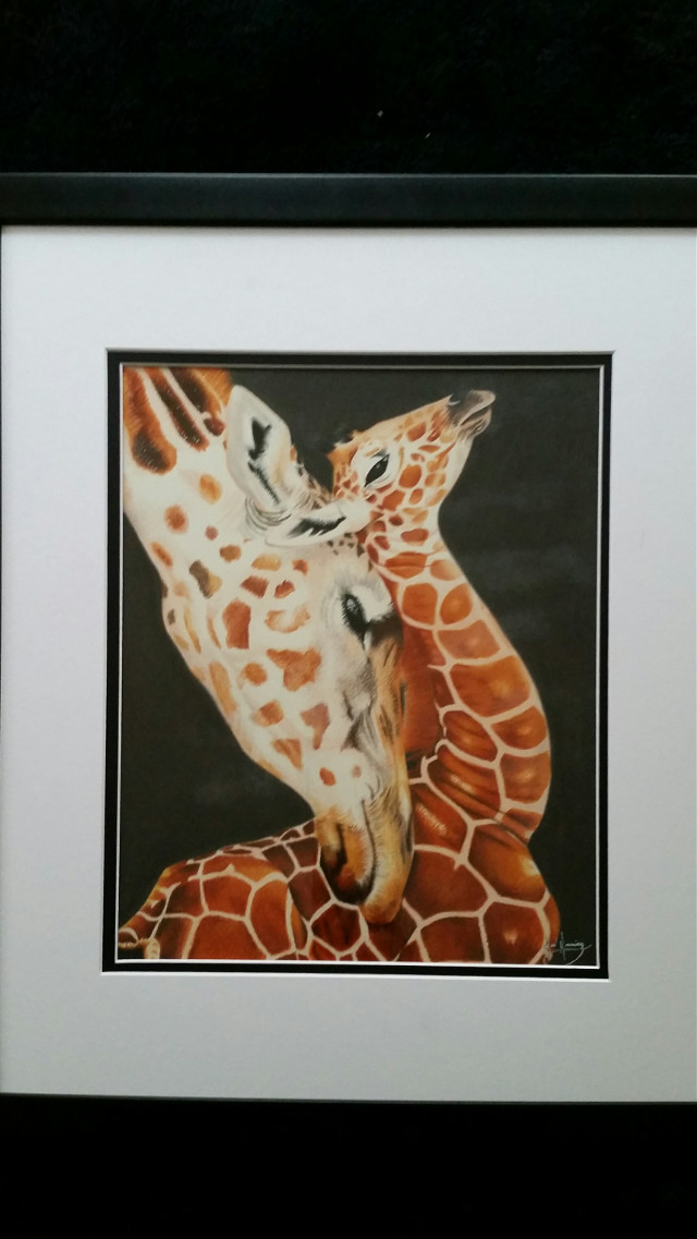 #artoftheday #giraffe #animals #colorpencil #artistic #creative #drawing #artwork #art #petsandanimals #pencilart #nature #love #emotions #cute #colorsplash #colorful #baby