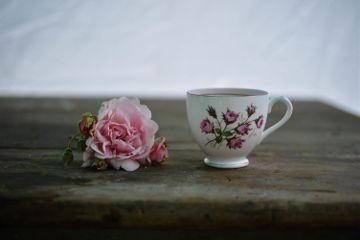 freetoedit pink rose cup vintage