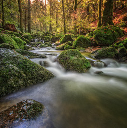 nature photography landscape mystic nationalgeographic