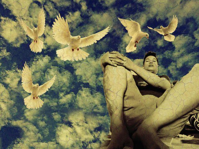 #sky,#bluesky,#bird
