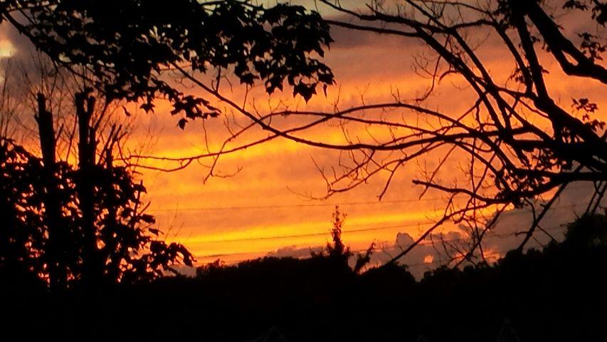 #freetoedit,#colorsplash,#sunset